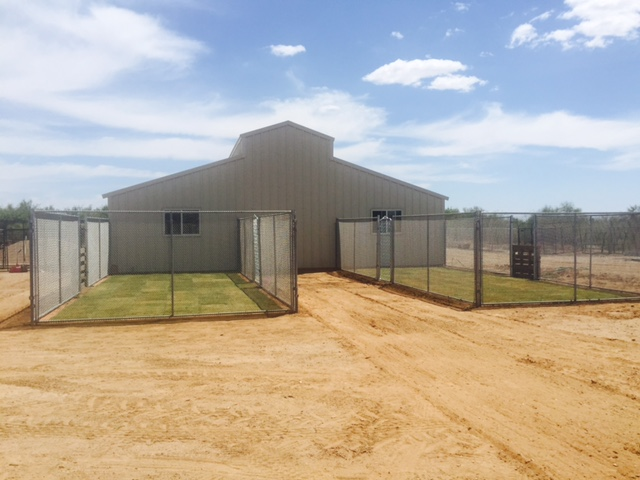 Cage free boarding wittmann az for Boarding facility for dogs